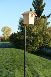Wild Birds Unlimited Bluebird Nest Box