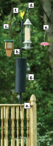 Bird Feeding Station on Deck